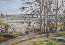 Landscape on the river Kuban №4