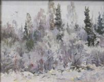 "The painting ""snow Fell"" by H. V. Shvetsov m 20x25"