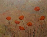 MELODY OF POPPIES