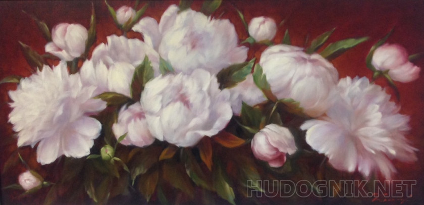 Peonies on Burgundy