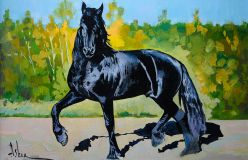 """Black beauty"""