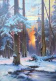 Sunset in the fir forest