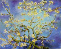 copy from work of van Gogh, almond blossom