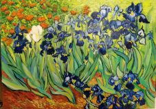 Copy Van Gogh Irises