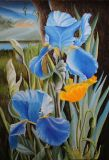 Landscape with irises.