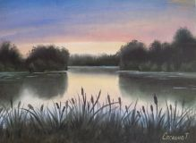 Evening landscape with reeds.