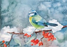 """Bird and berries"""